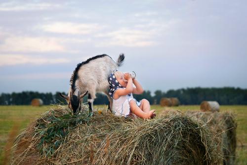 Каким детям рекомендовано кормление смесями на основе козьего молока?