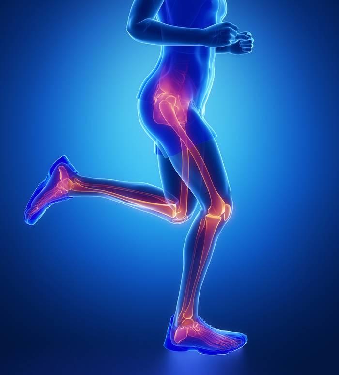 Симптомы и лечение остеопороза коленного сустава. Остеопороз коленного сустава лечение